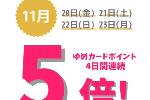 【4日間】ゆめカードポイント5倍!